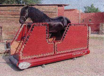 Entrenadora de caballos